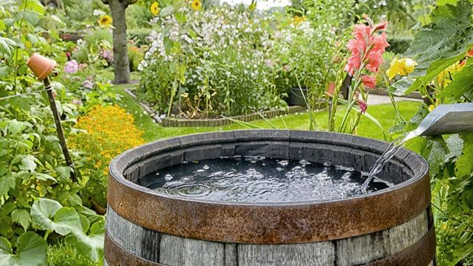 Gestion de l'eau au jardin