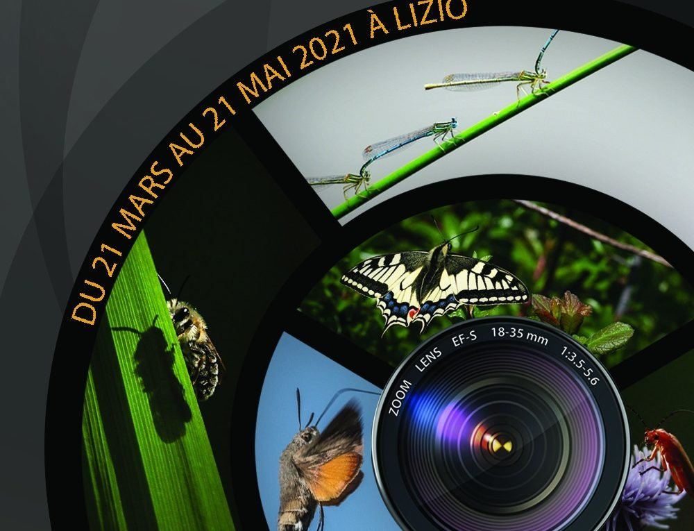 Affiche concours photo 2021.